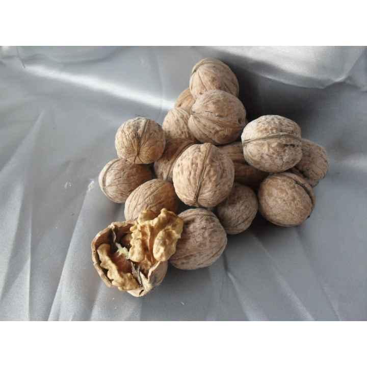 Грецкий орех в скорлупе, на вес
