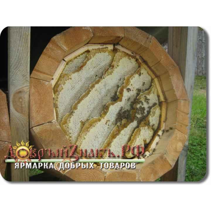 Мёд колодный выдержанный, 1 кг