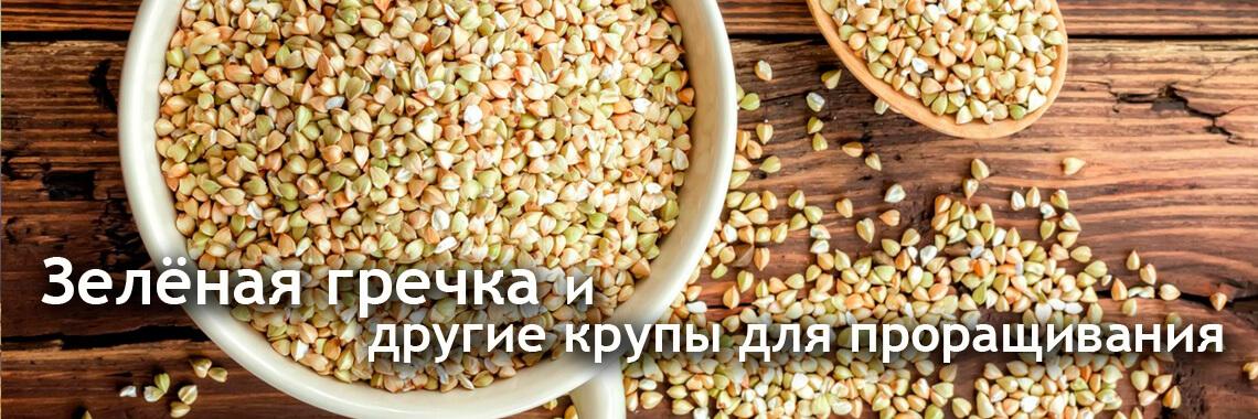 slajd0_grechka